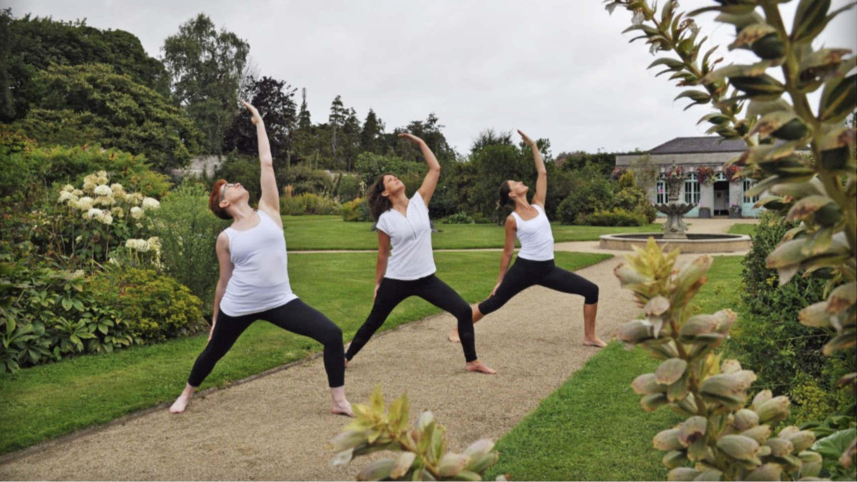 Danu Yoga Center Dundrum Dublin